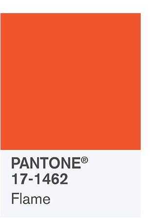 pantone orange 25 pinterest. Black Bedroom Furniture Sets. Home Design Ideas