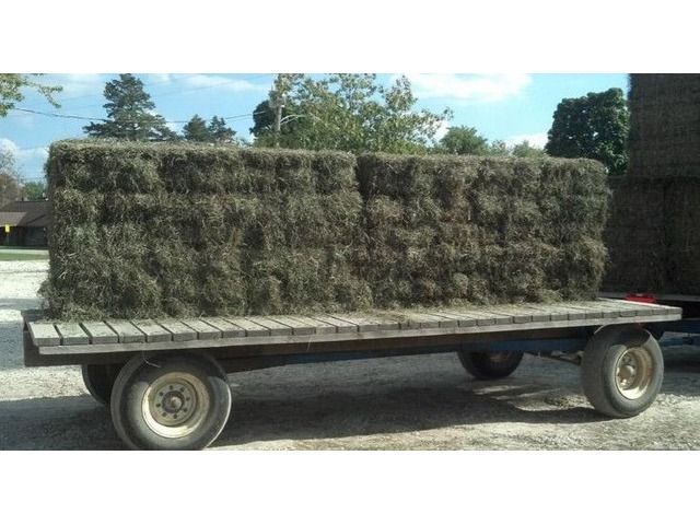Small Squares – Hay for Sale! Alfalfa & Mixed Grass