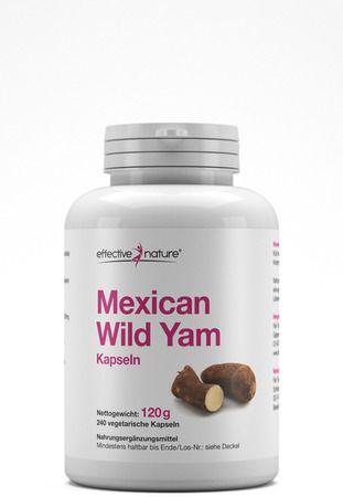 Mexican Wild Yam - Die Yams - Wurzel