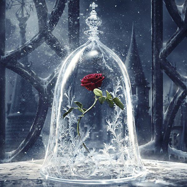 Papers.co wallpapers - as61-disney-beauty-beast-art-illustration - http://papers.co/as61-disney-beauty-beast-art-illustration/ - disney, illustration