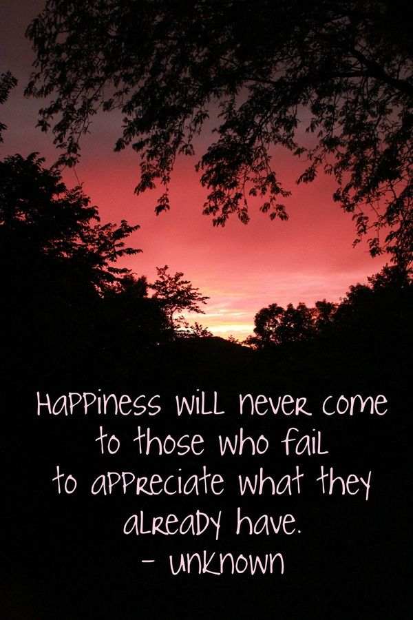 Happiness with never come to those who fail to appreciate what they already have.Amazing Beautiful, Beautiful Thoughts, Appreciation, Excited Life, Daily Inspiration, Etsy Happygolicky, Dr. Who, Inspiration Quotes, Love Never Fails Quotes