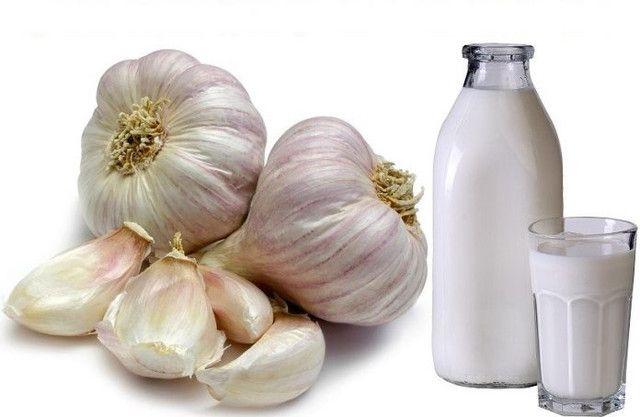 Česnakas su pienu stabilizuoja net patį didžiausią kraujo spaudimą