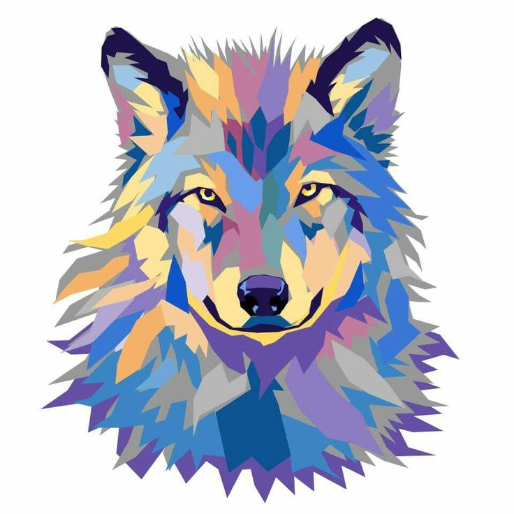 wild wolf vector artwork by joshua pomeroy vector and