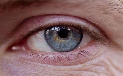 CENTRO ÓPTICO Juan Ramón TENA:El ojo es a menudo un buen modelo para entender el funcionamiento del cerebro y las enfermedades.  http://ow.ly/MepcG   #DMAE #retina #retinopatíadiabética