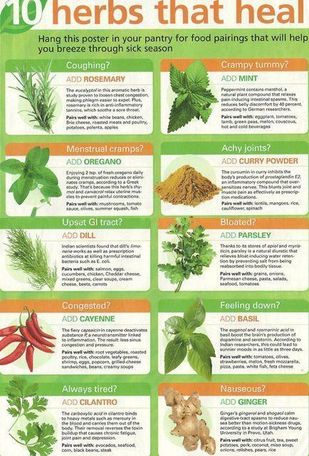 10 herbs that heal. / Spiritual, Pagan, Witchy  on imgfave