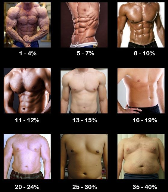 How to Accurately Measure Body Fat Percentage | Muscle For Life