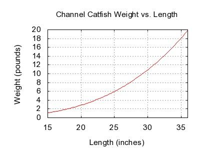 channel catfish size chart - Yahoo Canada Search Results
