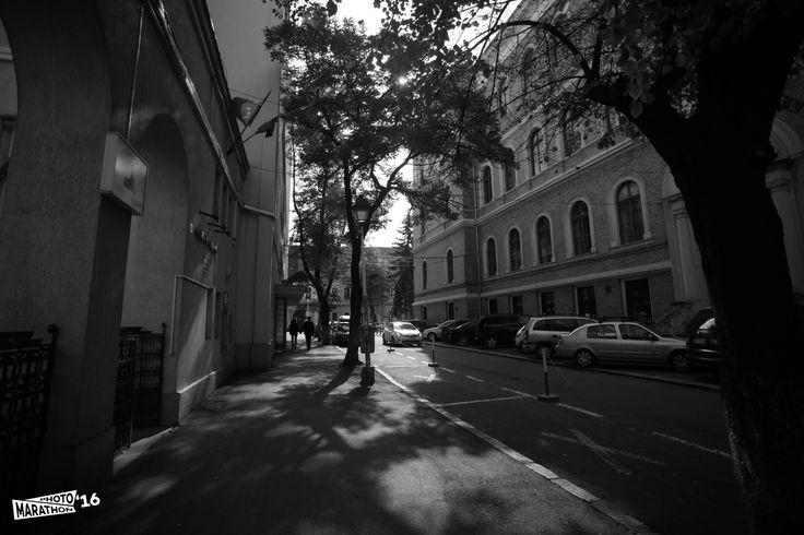 Străzi din Cluj - Premiul II, categoria Profesioniști - Bindea Sorina