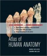 Stunning Atlas of Human Anatomy by Mark Nielsen free download ud ud ue http Anatomie Des MenschenKostenlosOnline