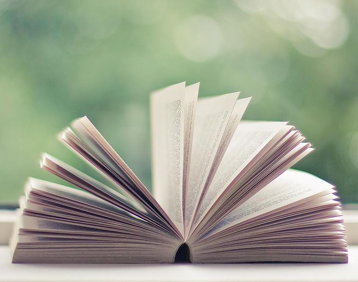 The 25+ best Book summaries ideas on Pinterest People of the - job summaries