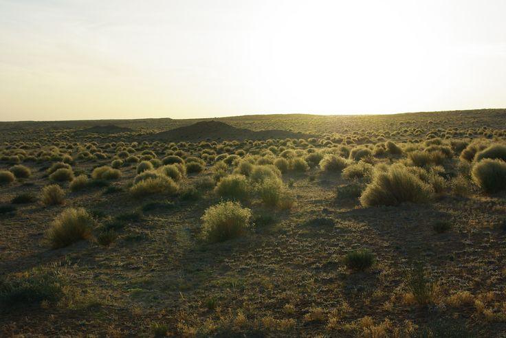 Le #soleil va bientôt se coucher sur le désert tunisien