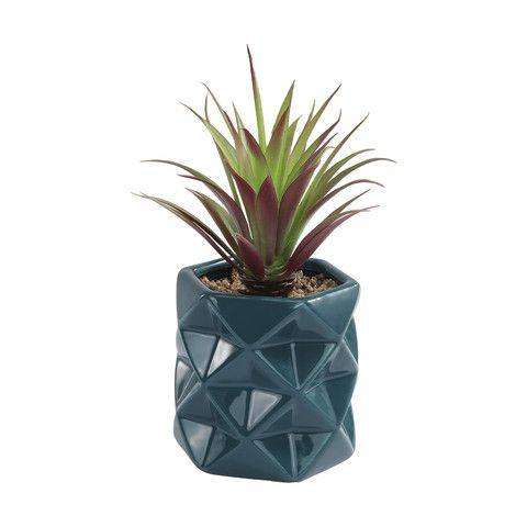Faceted Succulent - Green