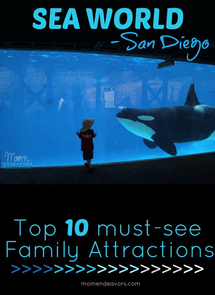 Sea World San Diego - Top 10 must-see attractions for kids & families! {via momendeavors.com}