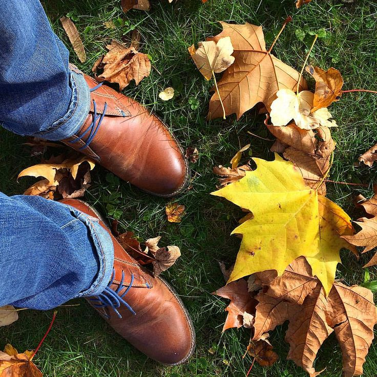 https://flic.kr/p/NqWyEW | Autumn shoes • #fall #autumn #weather #leaves #yellow #grass #shoes #fashion #leather #creativephototeam