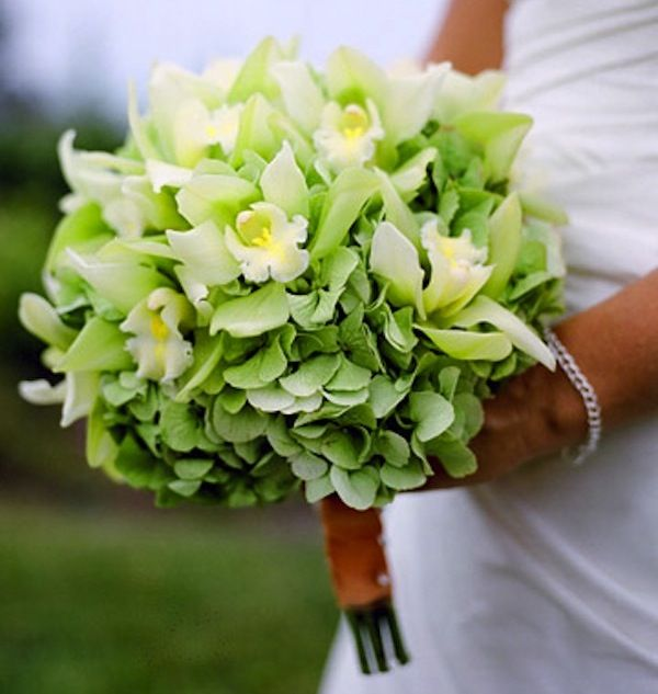 french tulip bridal bouquets modern | ... and orchids come together in this elegant monochromatic bouquet