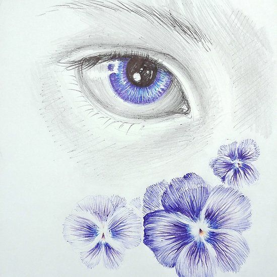 Vatching the violet flowers viola sororia and eye ball point pen drawing