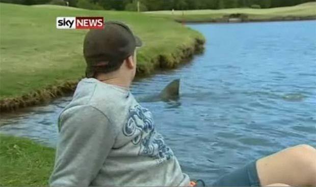 Australia también tiene hermosos tiburones (que comen golfistas)