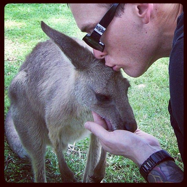 Matt Skiba and a kangaroo! Omg.