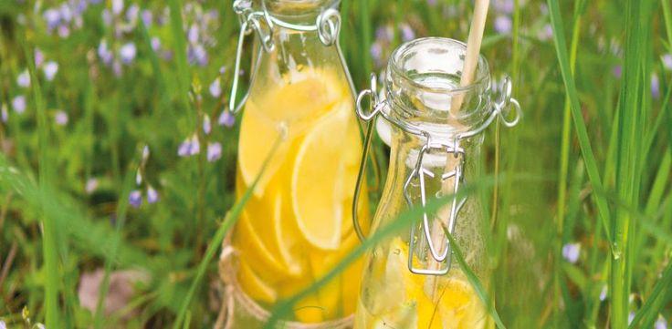 Z citronů vymačkejte šťávu a přes jemný cedníček ji nalijte do velkého džbánu, přidejte cukr a míchejte, dokud se nerozpustí. Vmíchejte zázvor,...