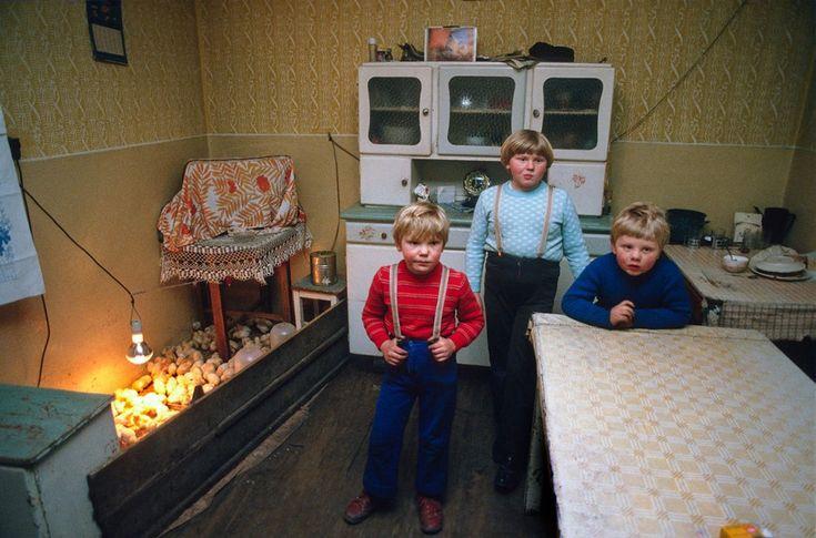 Dzieci i kurczęta, Stan Wojenny, Leszno 1982