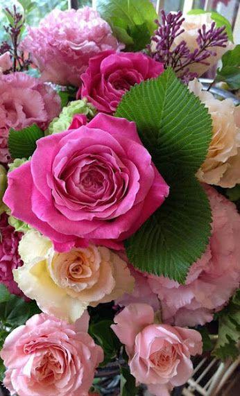 FLOWERS - ЦВЕТЫ !!! - Comunidade - Google+