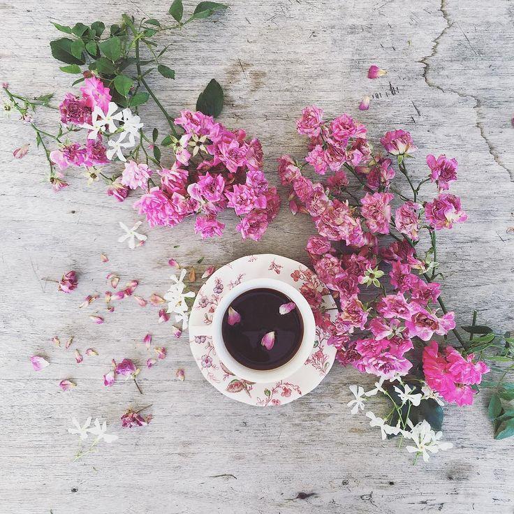 Good morning ☕️#bonjour #cettesemainesurinstagram #découvrirensemble #vzcomood #click_vision #igworldclub #tv_living #huffpostgram #artofvisuals #flowers #stilllifeisreallife #sunday_sundries #petalsandprops #feelfreefeed #tv_stilllife #lesphotographes #vzcomood #heart_imprint #vzcotone #rose #iphotofr #naughtyteas #fsparis #floralfridaycompetition #curated_nature #coffeeandseasons