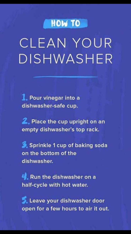 Cool Reinigungstipps Tricks Teppich reiniger Kaffeemaschine Ger t Kissen Dishwasher Toothbrush Holder Cleanses Best Carpet