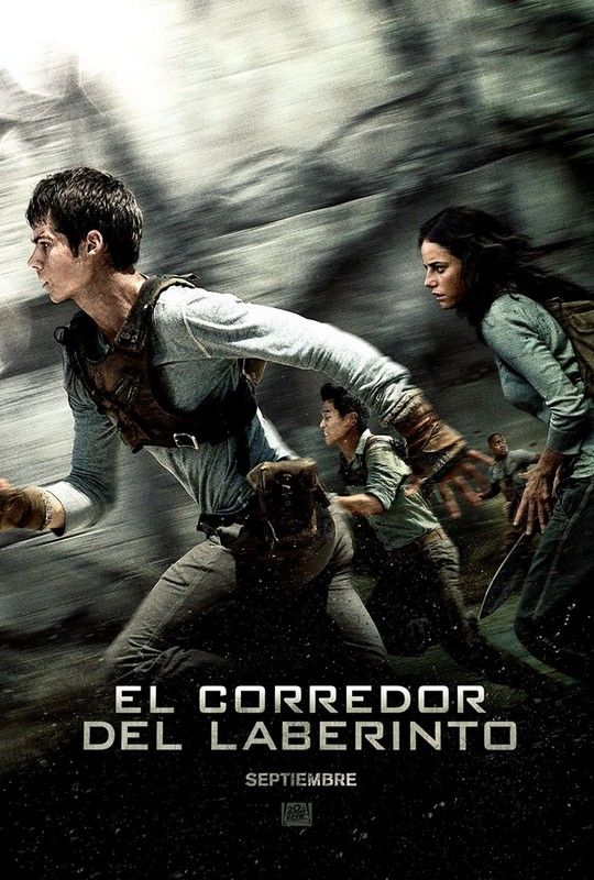 Director: Wes Ball  Altre pel·lícula de la saga: El Corredor Del Laberinto: Las Pruebas  Any de publicació: novembre, 2010