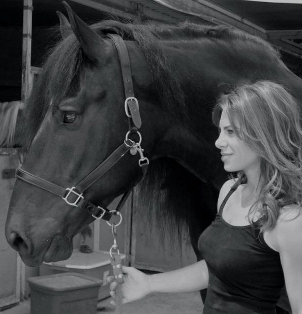 I have a new found respect for Jillian Michaels, having rescued Royale With Speed, grandson of Secretariat, from being shipped off to a slaughter house in Canada.