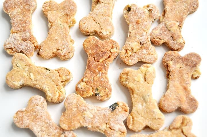 How To Make Your Dog's Day With Homemade Treats