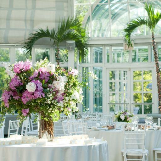 60 best brooklyn botanical garden images on pinterest brooklyn indoor wedding reception setup ideas at brooklyn botanic garden the palm house junglespirit Images