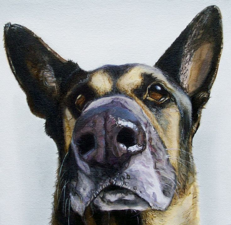 """Brooks"", 12"" x 12"", oil on canvas, 2011"