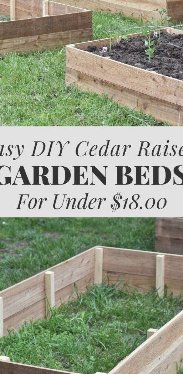 Learn How To Build A Raised Vegetable Garden Bed Out Of Cedar For Less Than 18 00 Vege Vegetable Garden Beds Vegetable Garden Raised Beds Garden Ideas Large