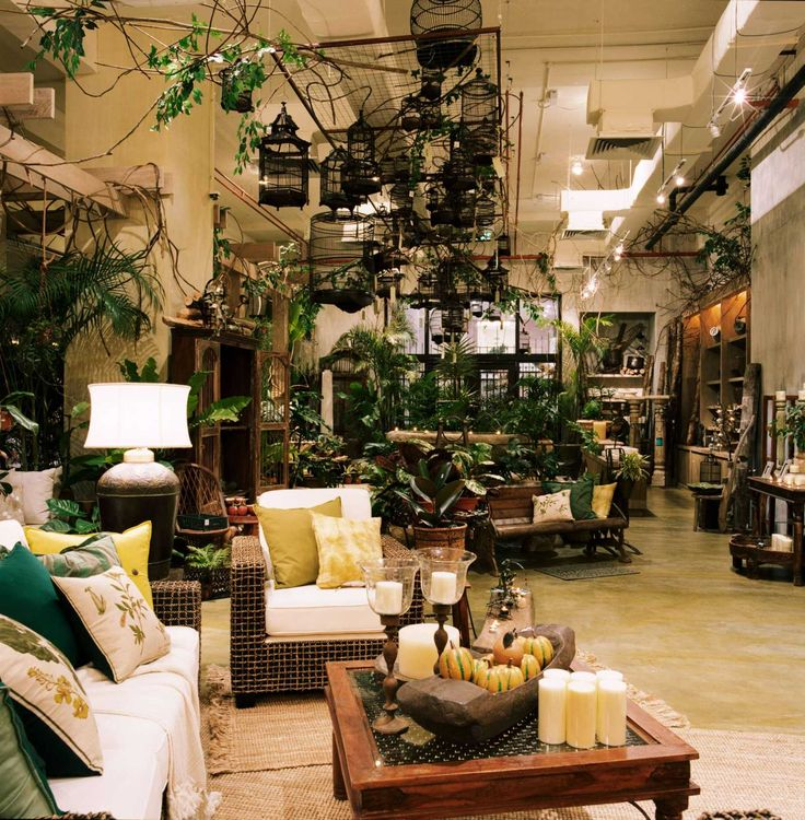 British india style interior - hanging birdcages, indoor plants, green and brown decor