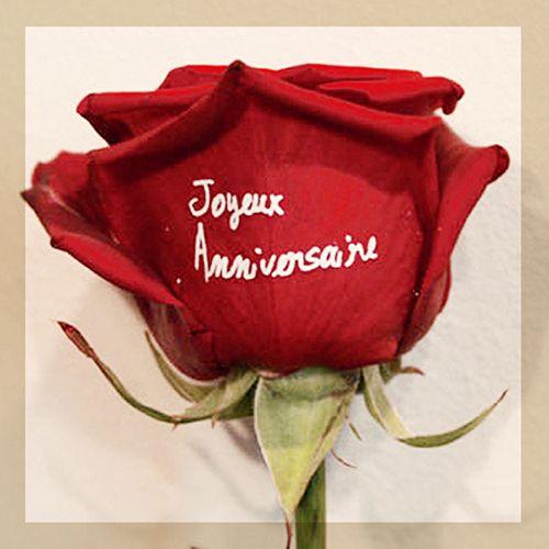 rose rouge marquée Joyeux anniversaire blanc