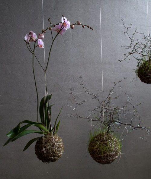 WABI SABI Scandinavia - Design, Art and DIY.: Garden on a string