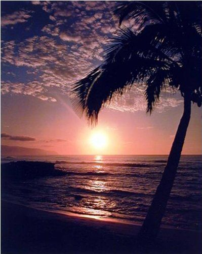 Hawaiian Sunset At Ocean Beach Scenery Nature Art Print Poster (16x20)