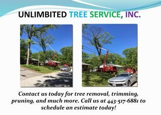 Best Tree Services - Millersville MD  Tree trimming service will expand sun introduction and air flow all through the tree and fundamental scene, which will enhance the tree's wellbeing. Simply make sure to keep an eye out for indications of sunscald, which regularly influences leafless deciduous trees in the winter time, http://unlimbitedtreeservice.com/millersville/