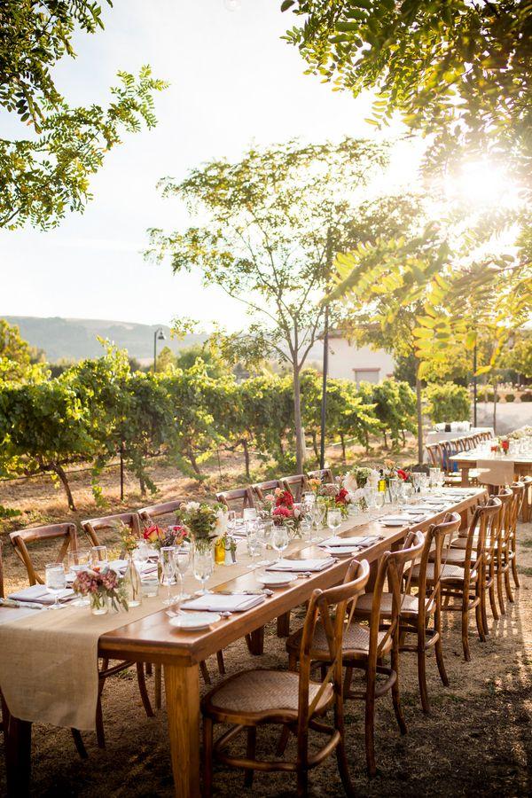 Vineyard wedding in Napa Valley of Sonoma