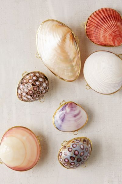 Shell Trinket Box - Urban Outfitters