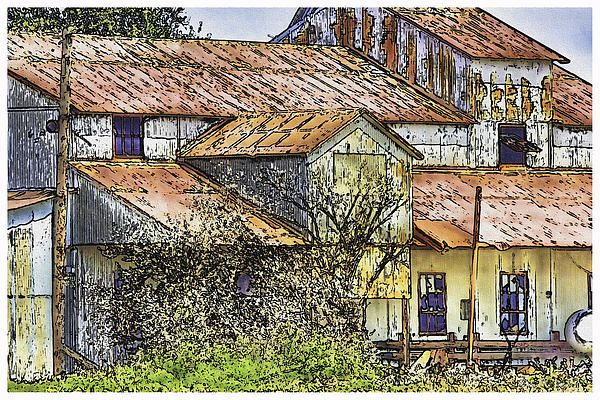 This is a digital ink and wash of an old cotton barn in Mississippi's Delta. This rustic old barn sits near the town of Clarksdale and can be seen from the main highway by people heading north toward the Casinos in Tunica or South through small towns to Greenville, Yazoo City or Jackson. This is another example of the rural culture that has kept this country thriving.