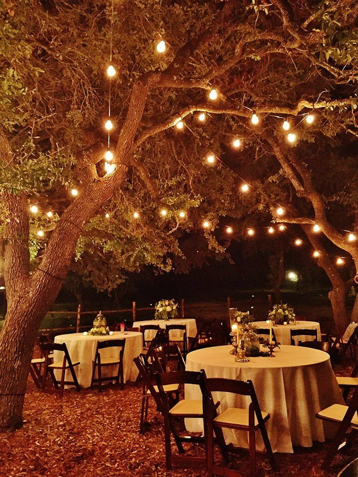 Best String Lights For Weddings : 17 Best images about Festoon Cafe String Lights on Pinterest Lighting design, Lodge wedding ...