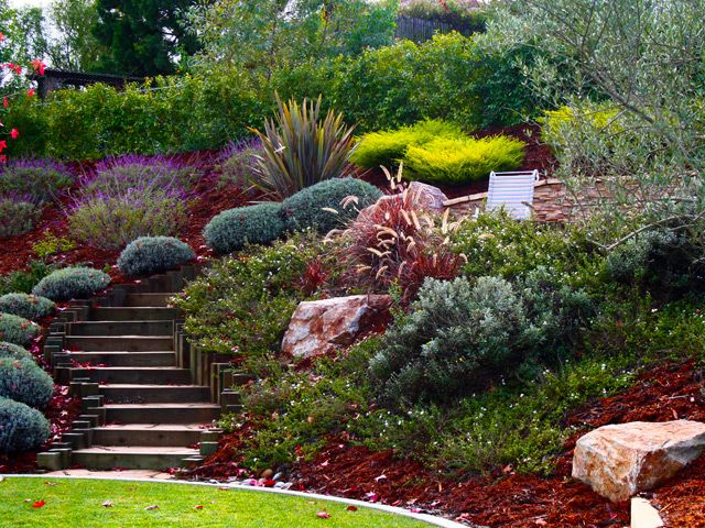 Hill landscaping ideas hillside steps landscaping for Pretty low maintenance shrubs