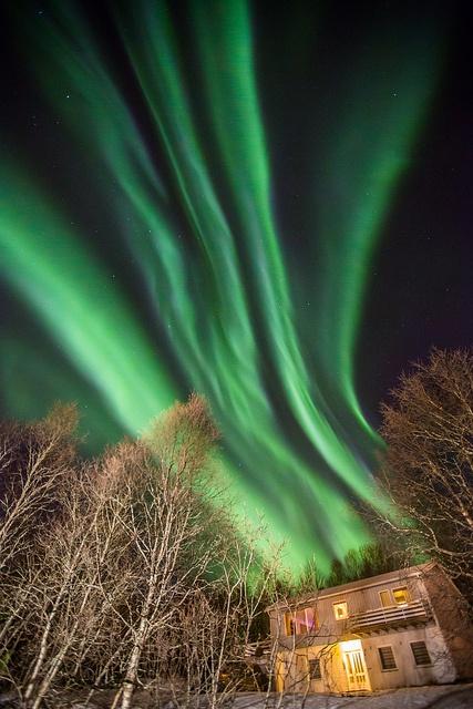 Aurora Borealis - Tromso, Troms Fylke, Norway