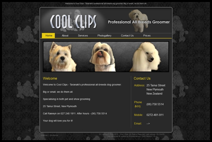 Cool Clips: expert dog groomers in New Plymouth