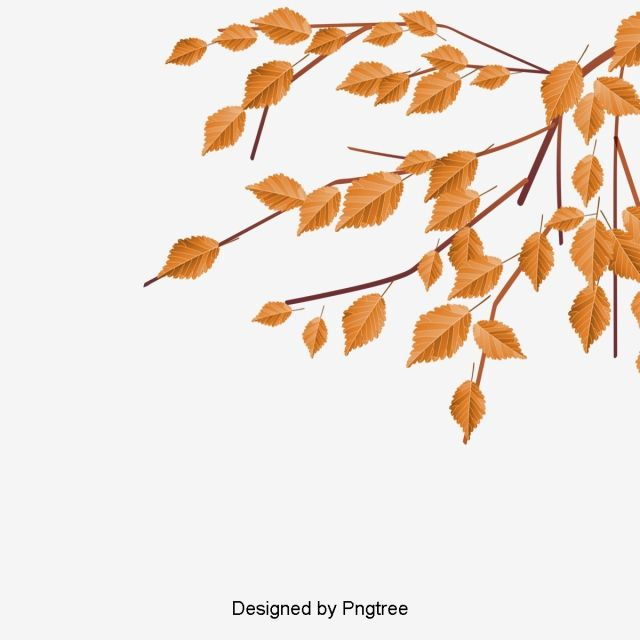 Autumn Leaves And Branch Autumn Fallen Leaf Leaves Png