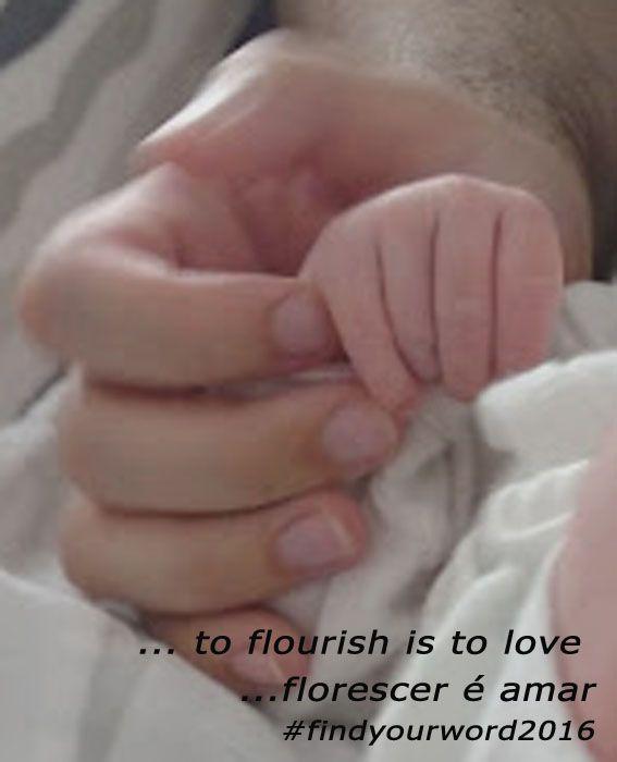 ... to flourish is to love / ... florescer é amar... #florescer #prosperar #flourish