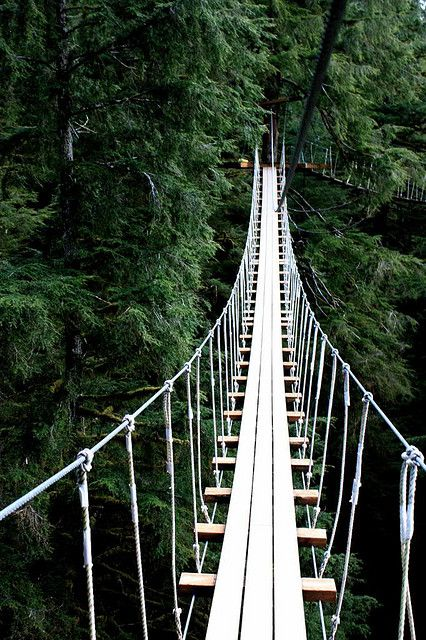 Tree Top Walk in Ketchikan, Alaska;  photo by runintherain, via Flickr