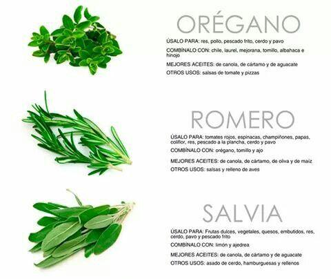 Usos de las finas hierbas en la cocina