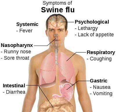 #swine flu